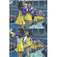 女子大生チアリーダー 大学野球応援  Vol.5【高画質aviファイル版】