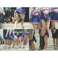 女子大生チアリーダー 演技 Vol.4【高画質aviファイル版】
