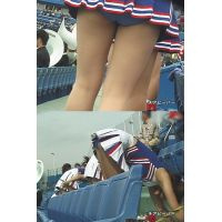 女子大生チアリーダー 大学野球応援 Vol.17【高画質aviファイル版】