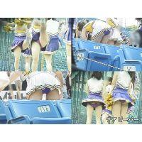 女子大生チアリーダー 大学野球応援 Vol.13〜15セット