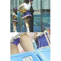 女子大生チアリーダー 大学野球応援 Vol.13