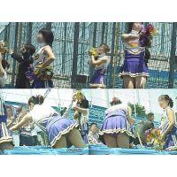 女子大生チアリーダー 大学野球応援  Vol.2【高画質aviファイル版】