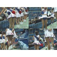 女子大生チアリーダー 大学野球応援  Vol.23〜25セット【高画質aviファイル版】