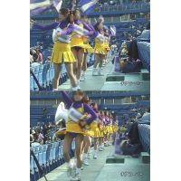 女子大生チアリーダー 大学野球応援  Vol.4【高画質aviファイル版】