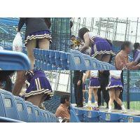 女子大生チアリーダー 大学野球応援  Vol.12【高画質aviファイル版】