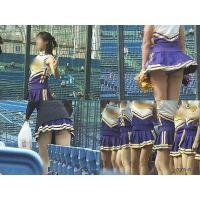女子大生チアリーダー 大学野球応援  Vol.9〜12セット【高画質aviファイル版】