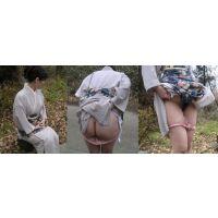 [274]淑女の着物パンチラ
