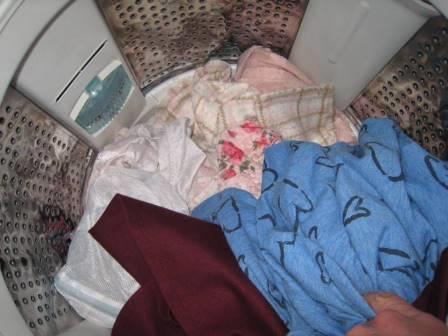 後輩JDひとり暮らし宅、未洗濯下着にいたずら17