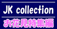 JK collection 【お花見特集編】